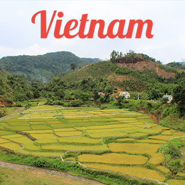 Travel Guides: Vietnam