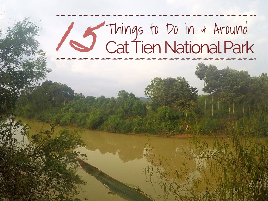 15 Things to Do in and Around Cat Tien National Park